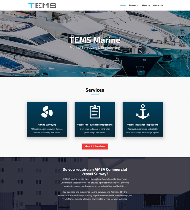 TEMS Marine Website Design